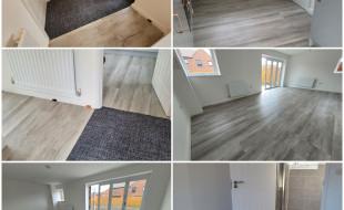 更換地毯地板(SPC, LVT, Laminate Floor)專業意見及服務 代理Milliken地毯及LVT地板